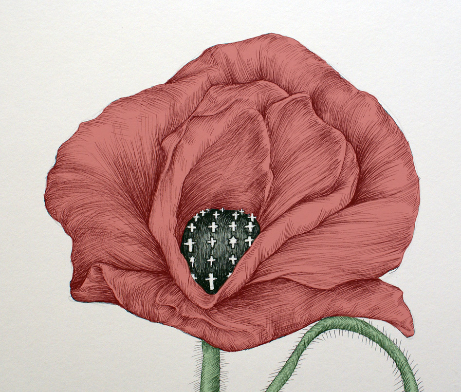 Red Poppy for Memorial Day